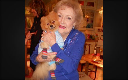 Rebel Pomeranian with Betty White